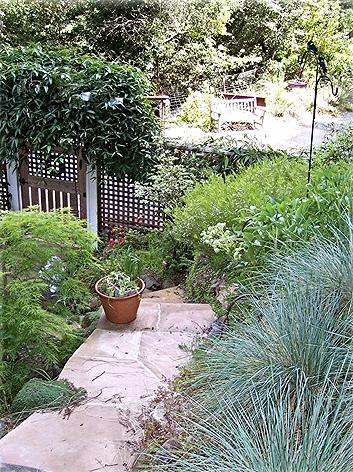 Portfolio Marin Landscape Designer Architect Installer And Contractor Landscape Design Modern Garden Landscape