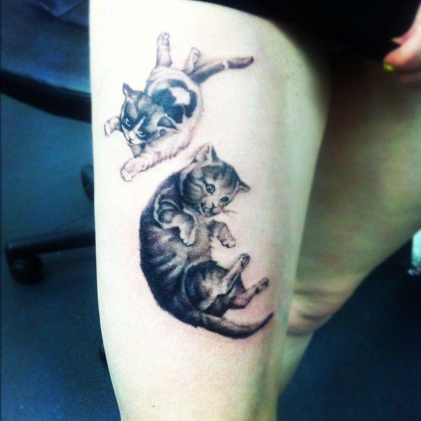 kittycatssss