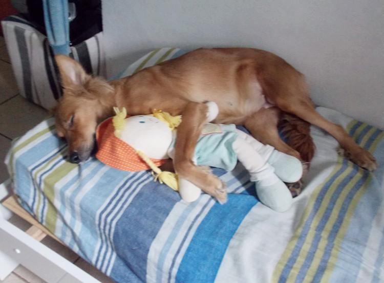pls be quiet she is sleeping http://ift.tt/2dGsFFn