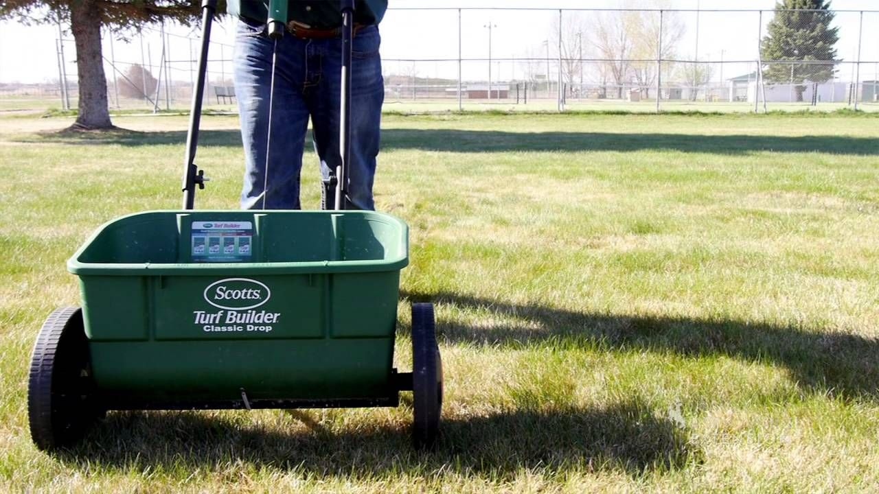 How to apply lawn fertilizer from the ground up lawn