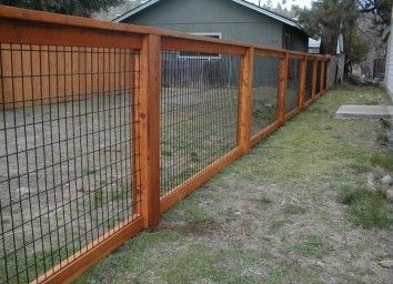 Fence Backyard Ideas gorgeous fence backyard ideas garden design garden design with backyard fence ideas pictures Find This Pin And More On Backyard Ideas By Jennsgolden