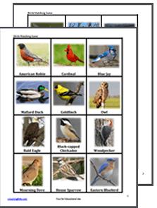 Printable Bird Matching Game | Games for kids, Matching