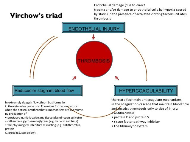 endothelial injury reduced or stagnant blood flow