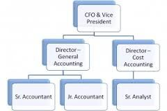 Accounting Job Hierarchy  Anthropology Project