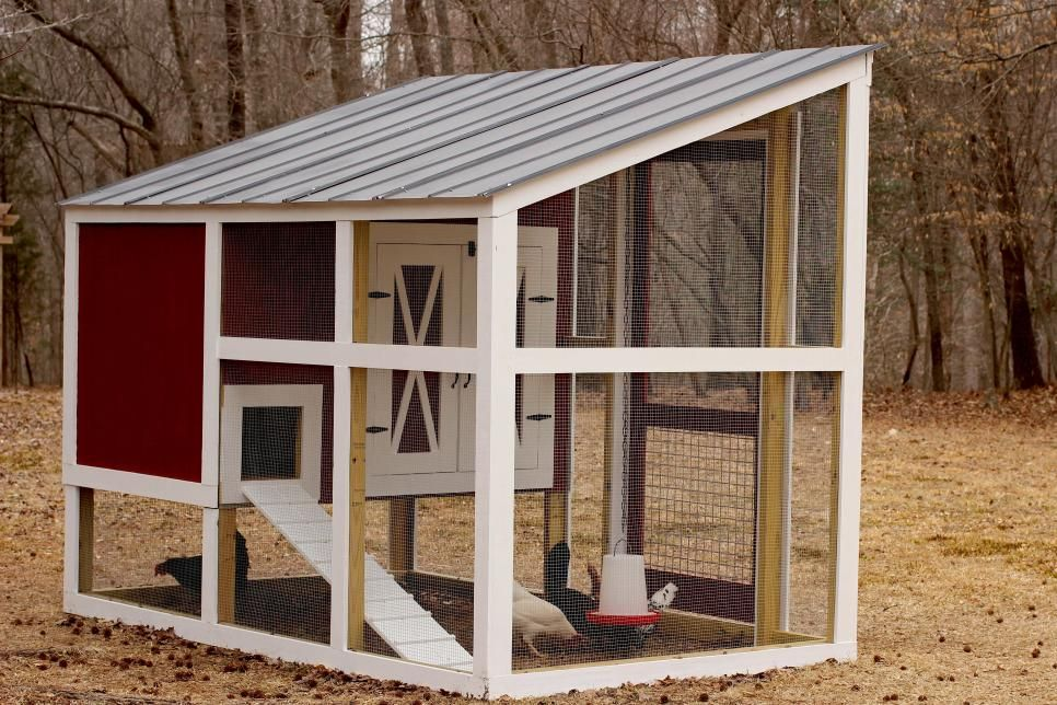 Build Your Own Custom Chicken Coop (With images ...