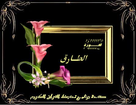 سورة الطارق ١٧ آية مكتوبة Quran Kareem Chalkboard Quote Art