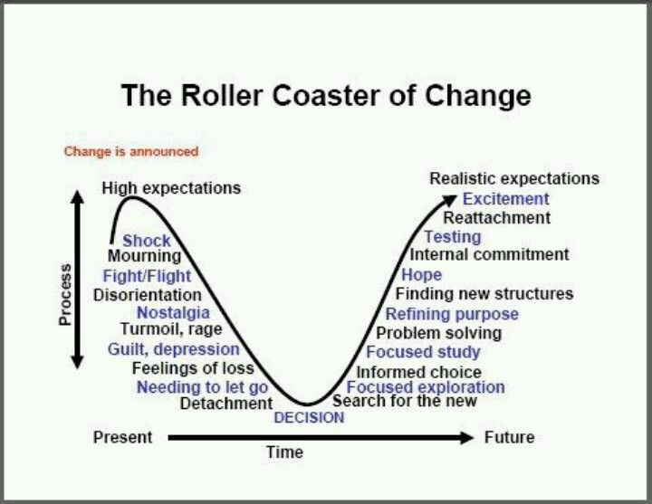 Roller Coaster of Change > acceptance, moving onto next