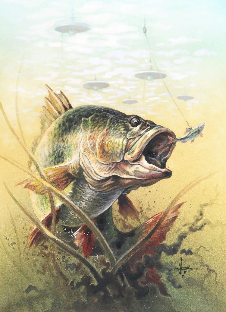 Своими руками, рыболовные картинки