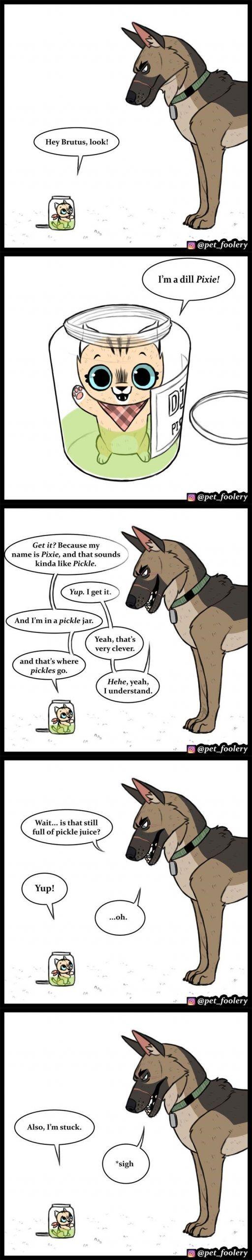 Pixie & Brutus 35#brutus #pixie