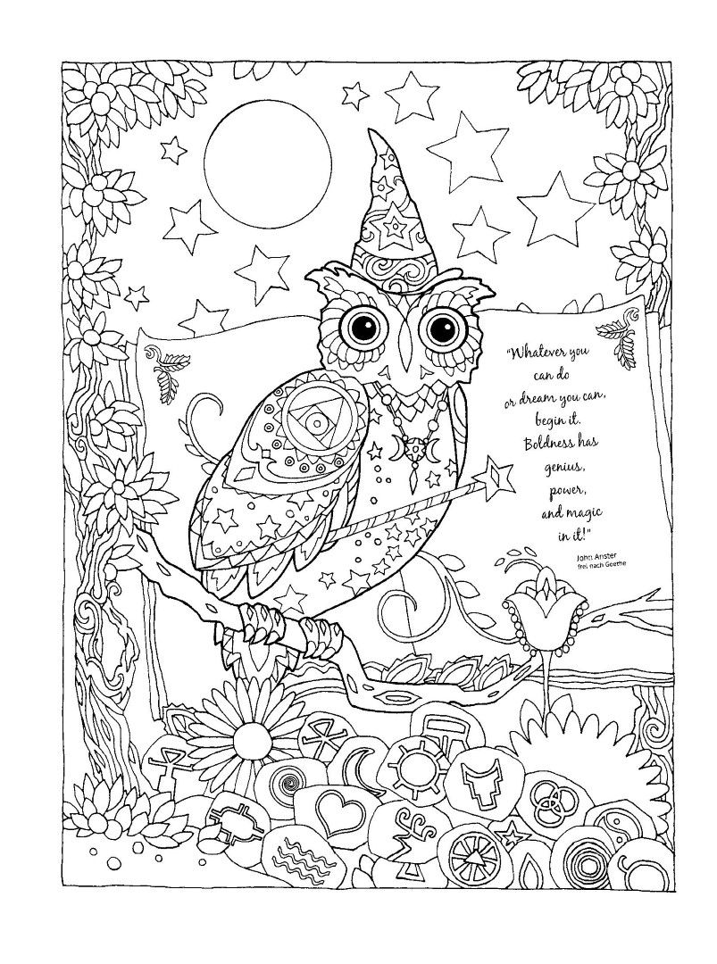 Owl Coloring Pages | Owl, Wise owl and Baby owl