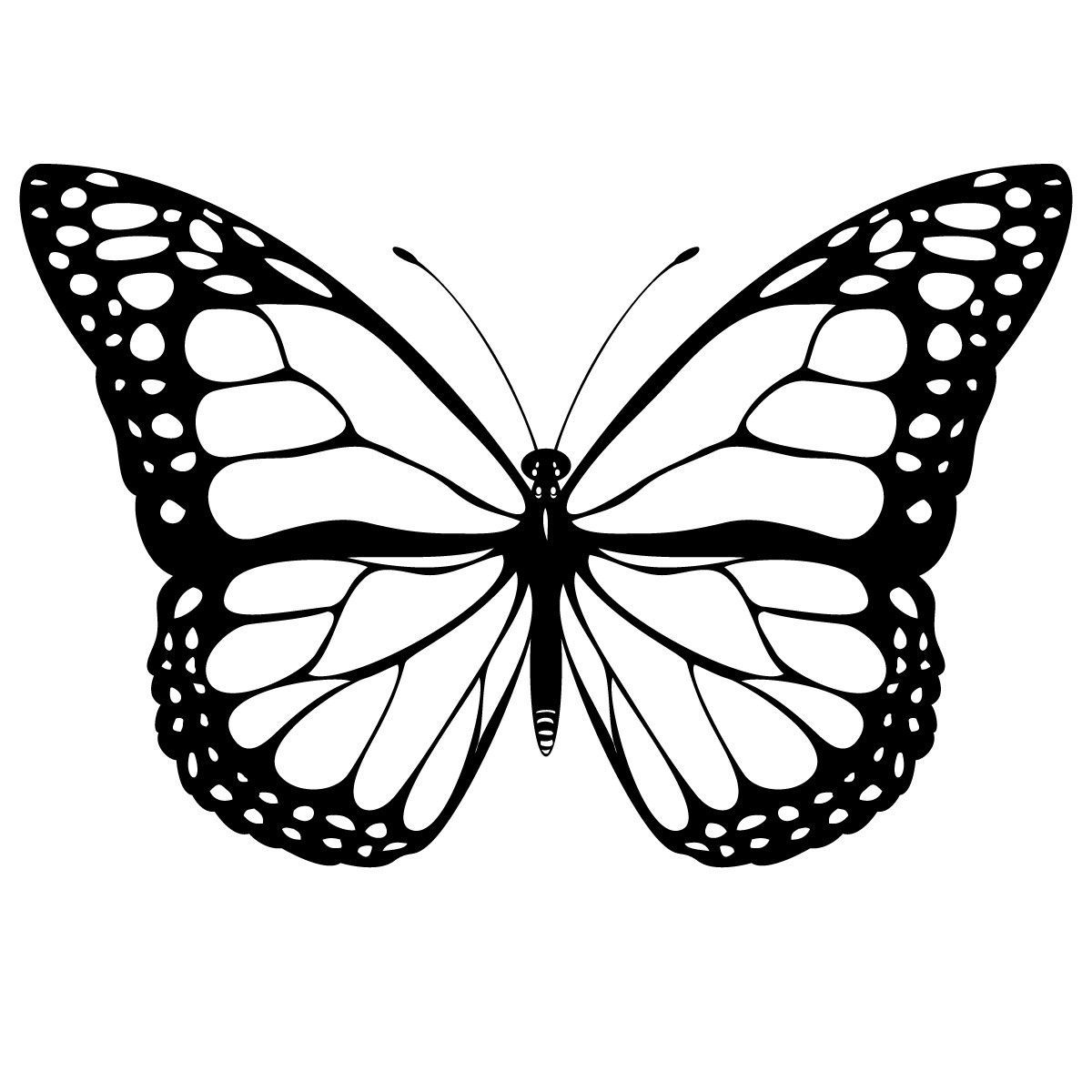 Free Printable Butterfly Coloring Pages For Kids in 6  White