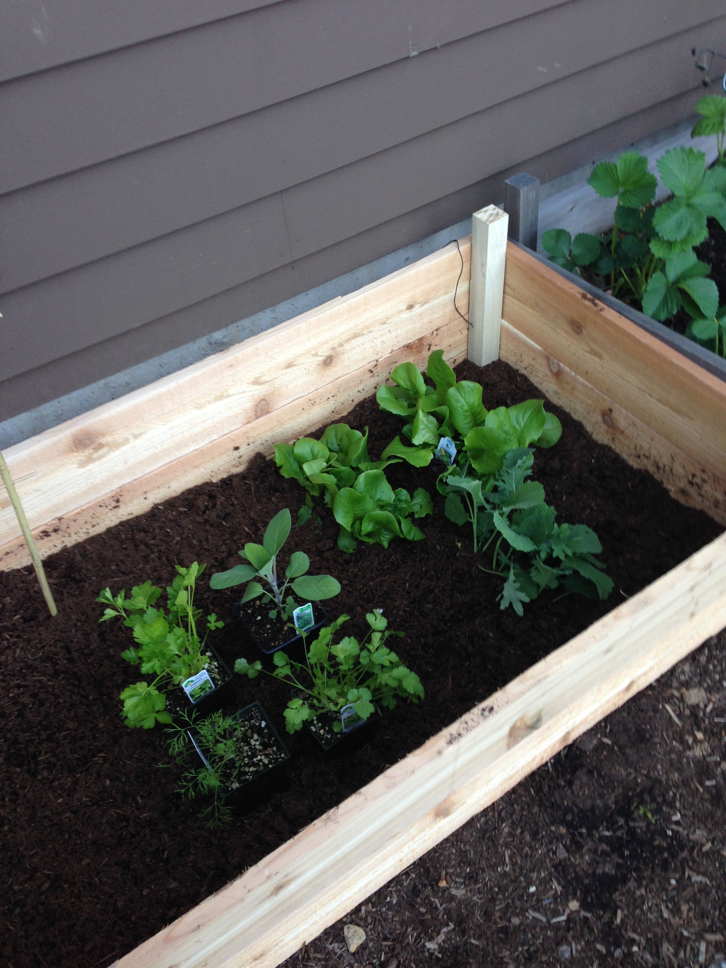 Free downloadable plan for building your own raised garden ...