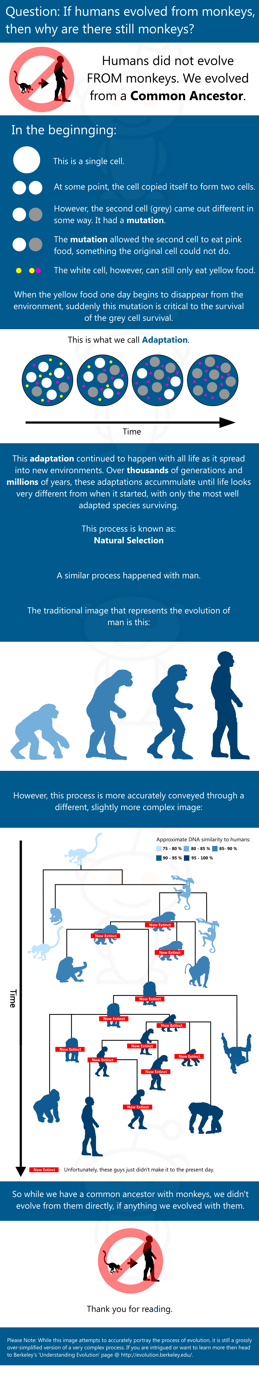 What idea did hardy and weinberg disprove - Question If Humans Evolved From Monkeys Then Why Are There Still Monkey Humans Did Not Evolve From Monkeys We Evolved From A Common Ancestor