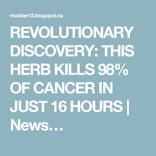 REVOLUTIONARY DISCOVERY: THIS HERB KILLS 98% OF CANCER IN JUST 16 HOURS | News…
