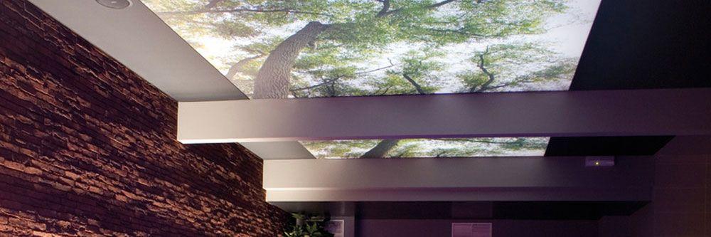 Die Extravagante Spanndecke Mit Wald Muster Spanndecken Decke Design