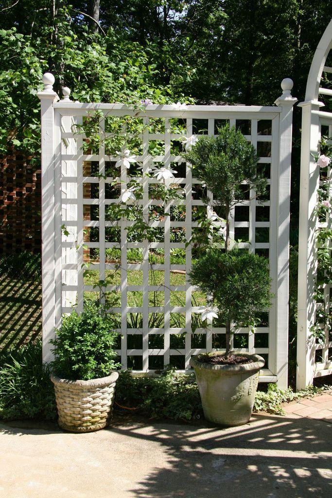 Brinker Garden Lattice At Entry By Pandorea Pergola Garden Backyard Landscaping Designs Garden Structures