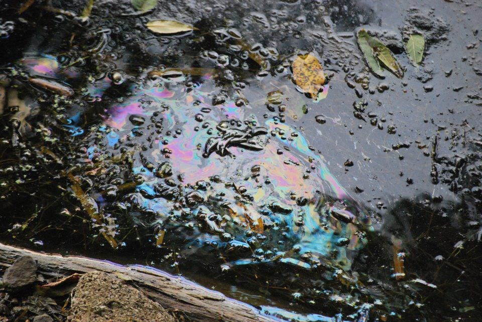 Tar Sands pipeline leak: Enbridge Line 81 in North Dakota