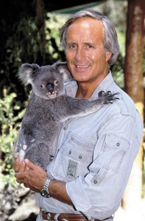 Jack Hanna | Jack hanna, Animals, Koala bear