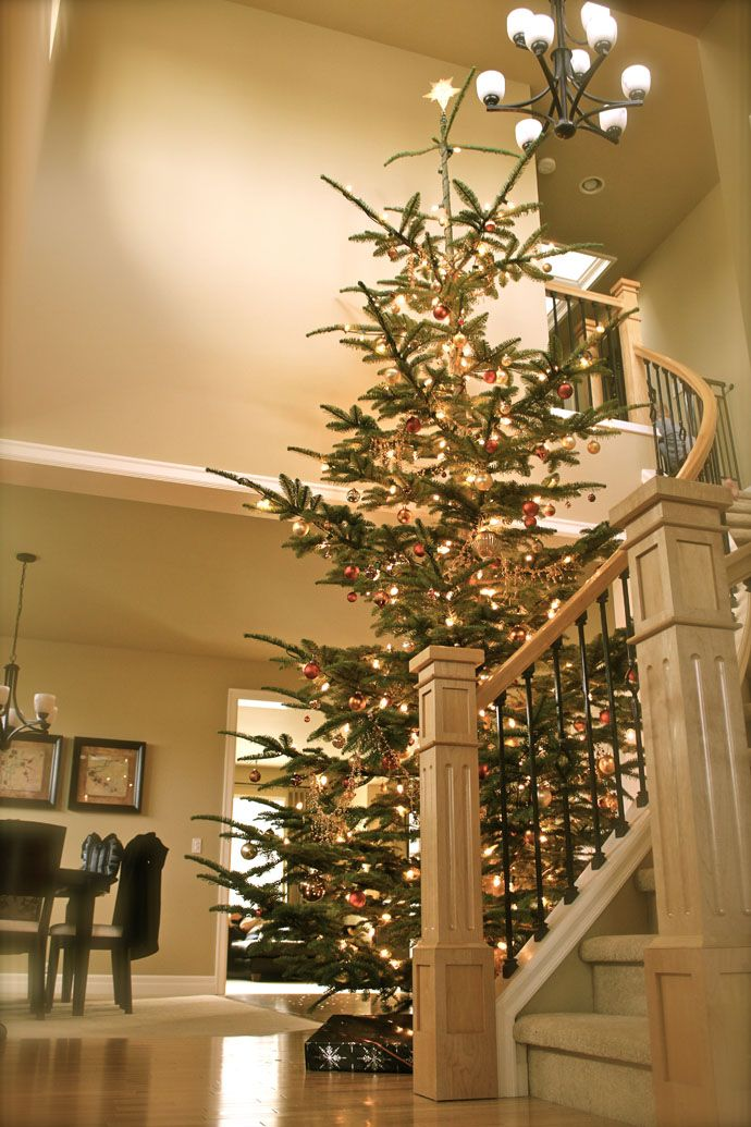 10 Inexpensive Ways Of Decorating Your Home For The Holiday Season - reminds me of the tree we had growing up.