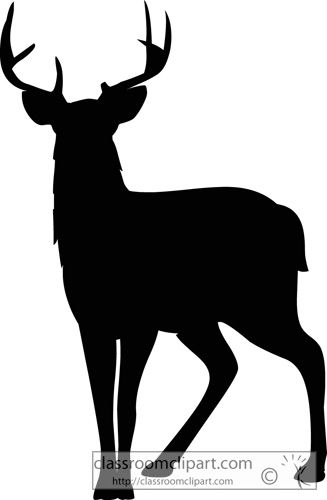 Deer silhouette. Silhouettes mule classroom clipart