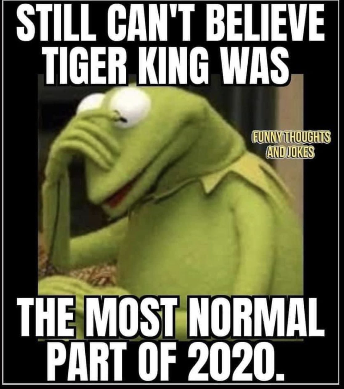 I Never Even Saw It In 2021 Funny Funny Thoughts Haha Funny