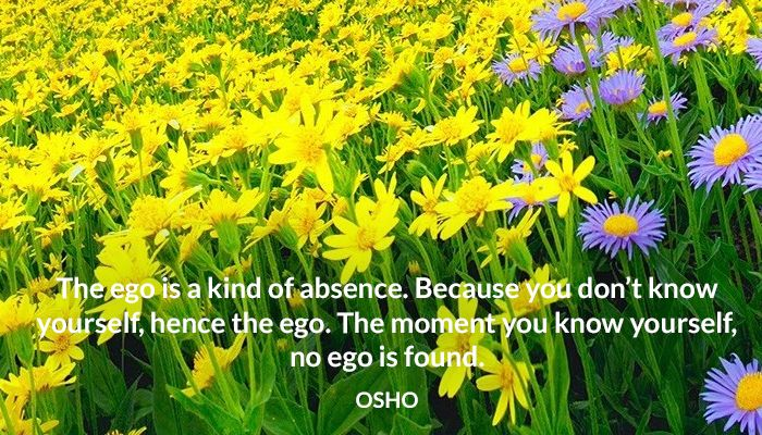 The Ego Is A Kind Of Absence Because You Don T Know Yourself Hence The Ego The Moment You Know Yourself No Ego Is Found Osho Ego A Osho Osho Quotes Ego
