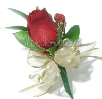 Wholesale flowers wedding flowers bulk flowers buy fresh cut wholesale flowers wedding flowers bulk flowers buy fresh cut mightylinksfo