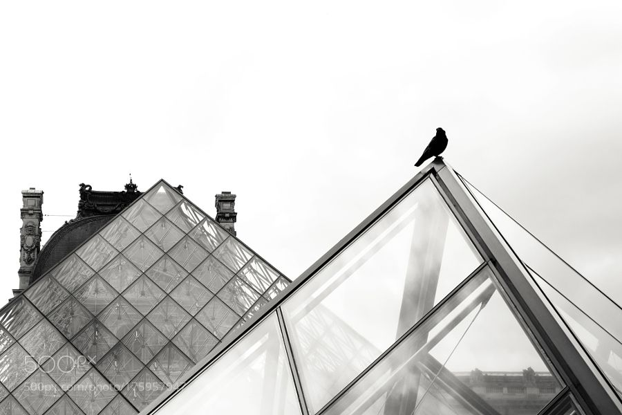 Louvre by MBetley check out more here https://cleaningexec.com