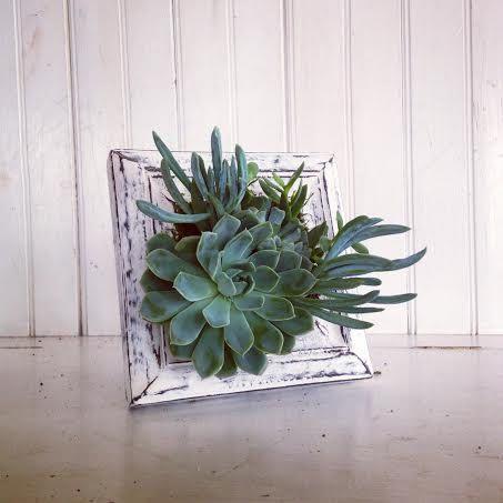 Vertical Succulent Garden By Verticalflora On Etsy Jardines