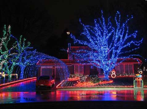 Wrapping Trees With Christmas Lights Outdoor Led