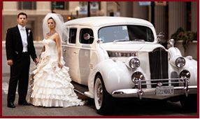 1939 Packard Limousine White Magic Antique Wedding Car Rental Antique Cars Wedding Transportation Car Rental