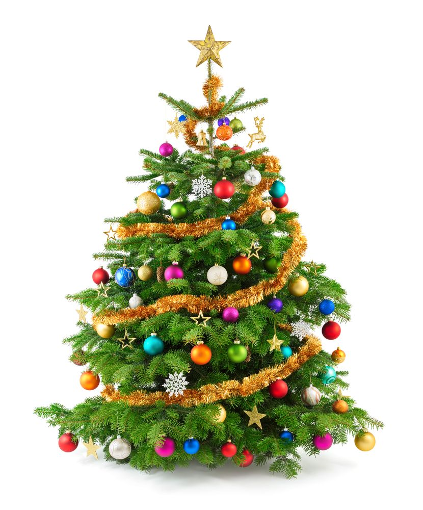 The Christmas tree originated in Germany.