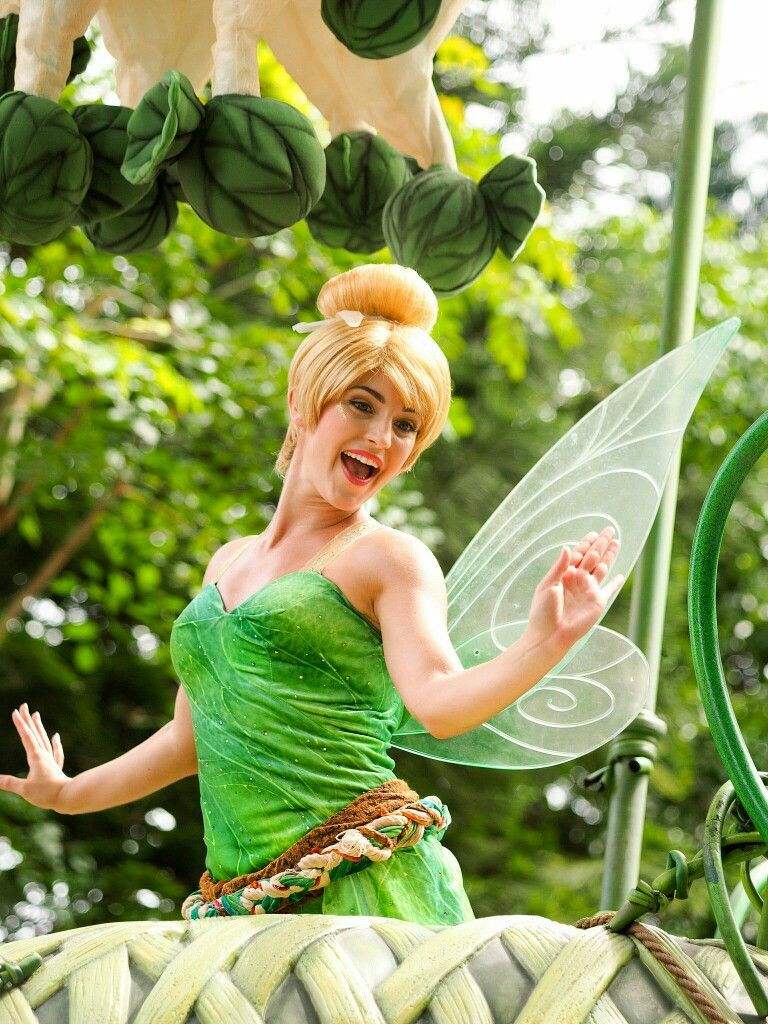 Pin by karleigh mastrianna on disney fairies pinterest disney magic kristyandbryce Image collections