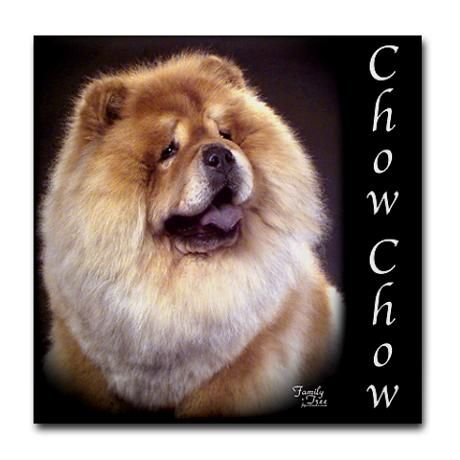 Chow Chow Tile Coaster By Family Tree Imaging Chow Chows Chow
