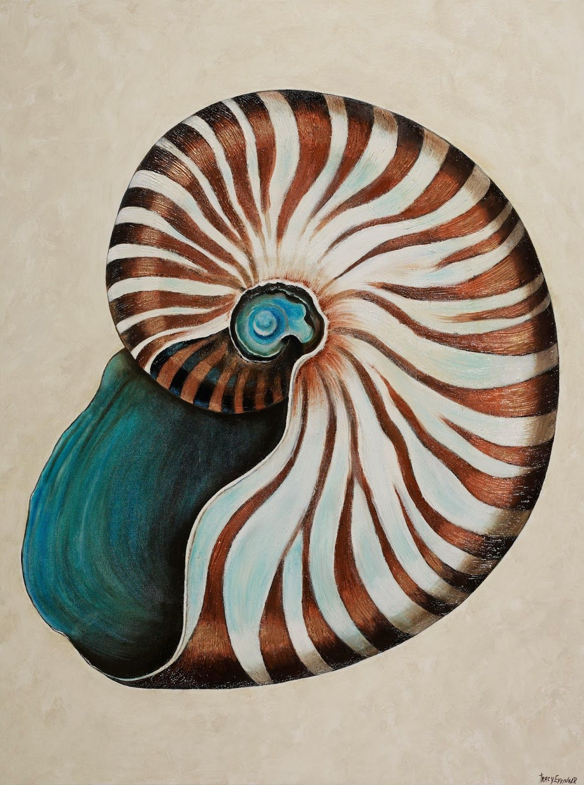 Paintings By Tracy Effinger Upton Nautilus Shells Peinture Huile