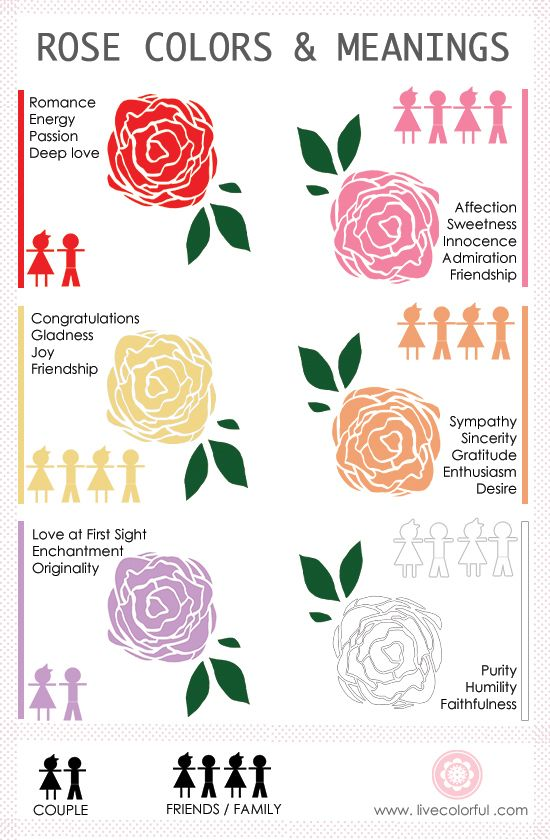 Valentine S Day What The Color Of My Roses Means Live Colorful Rose Color Meanings Color Meanings Rose Meaning