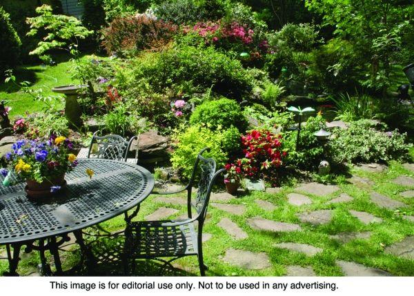 alternatives to grass backyard | Grass-Free Landscaping a ...