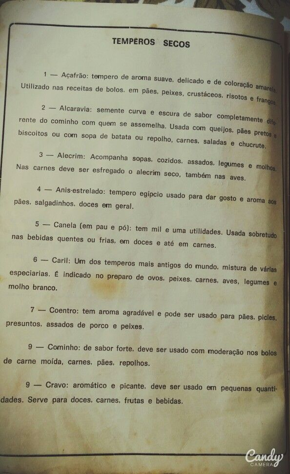 Livro de receitas da tia Ires 1