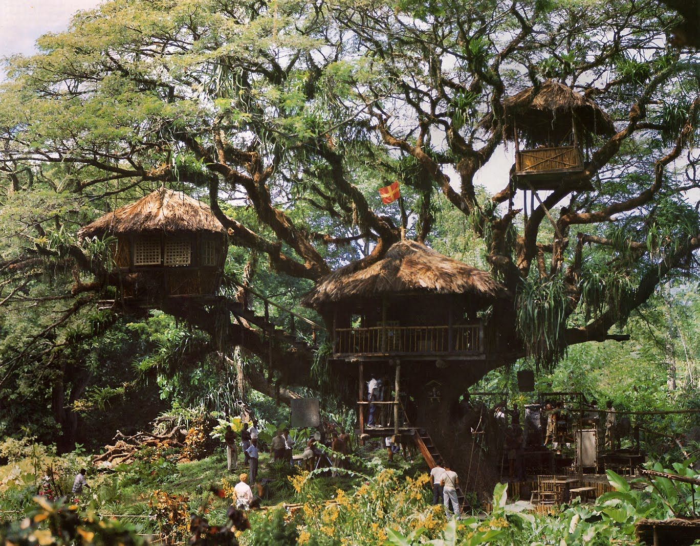31 Awesome Tree Houses - Win Gallery