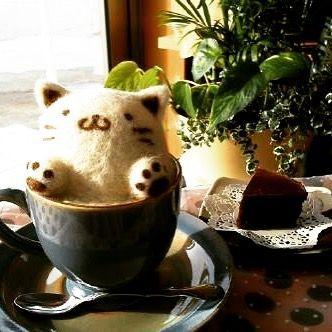 "Meow! #cat #cafe #coffee #kawaii #cute"""
