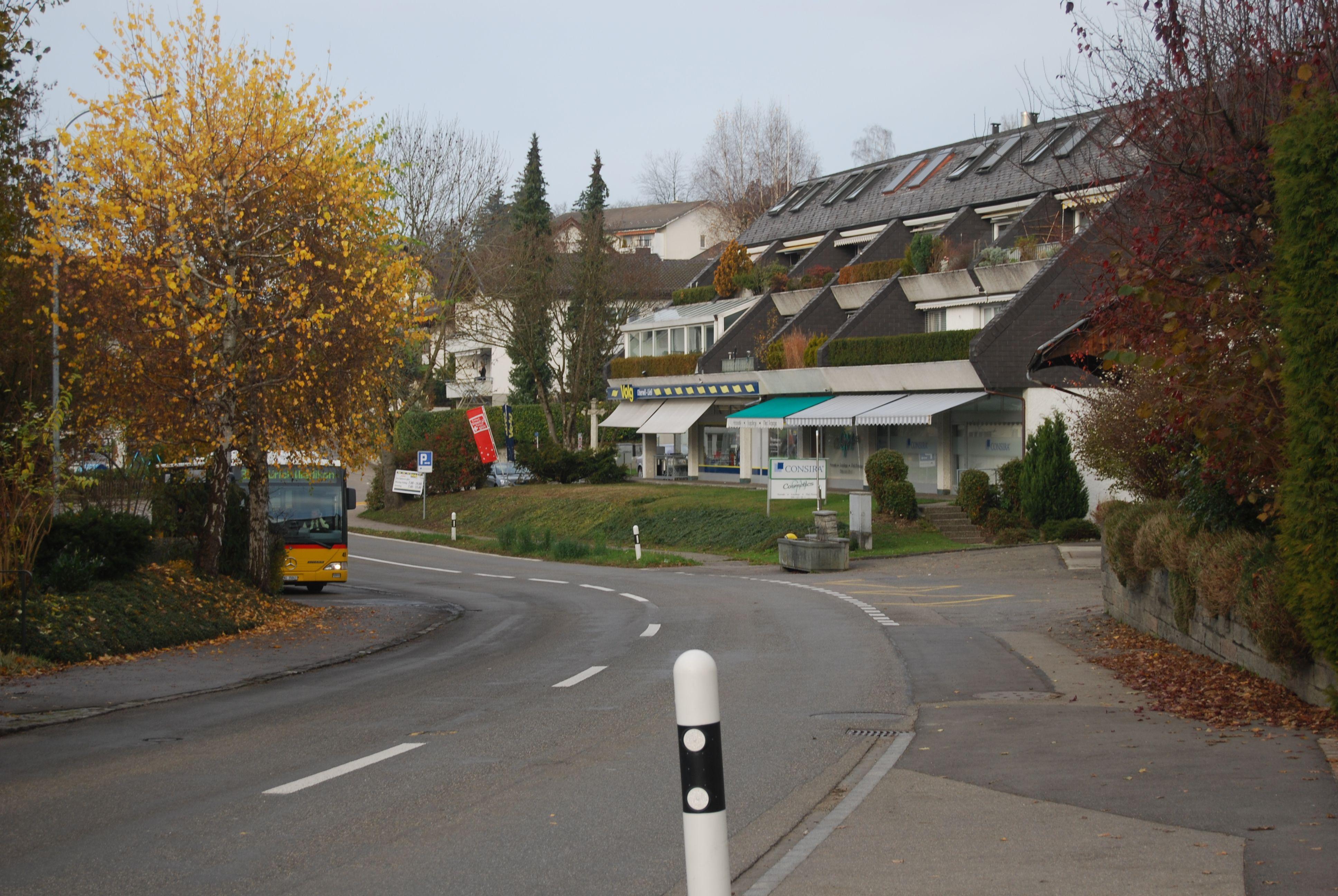 vila dos milionarios Oberwil-Lieli suiça