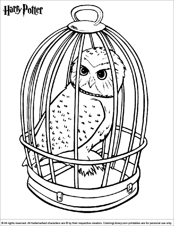 Harry Potter coloring page Harry Pinterest Harry potter