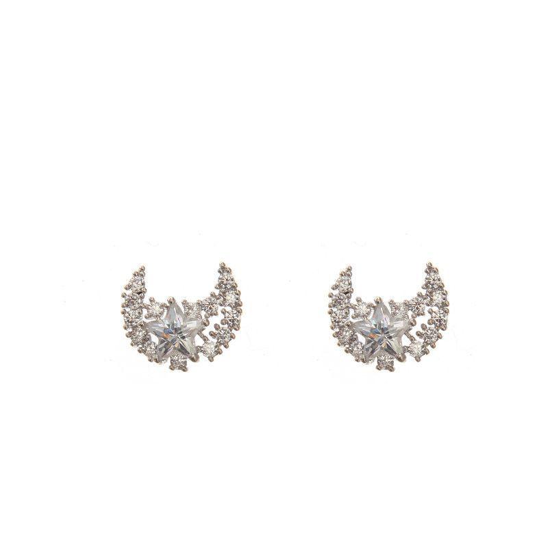 2-6537 Fashion Earring