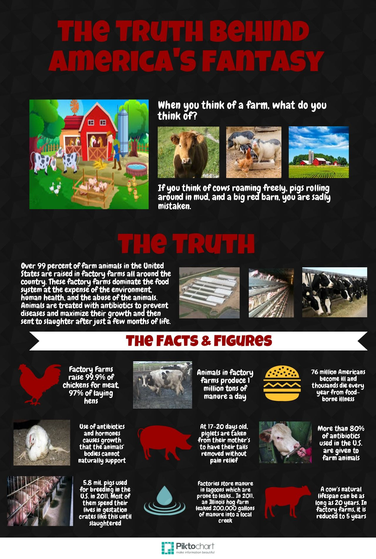 Factory Farming... Infographic Project for AP Human