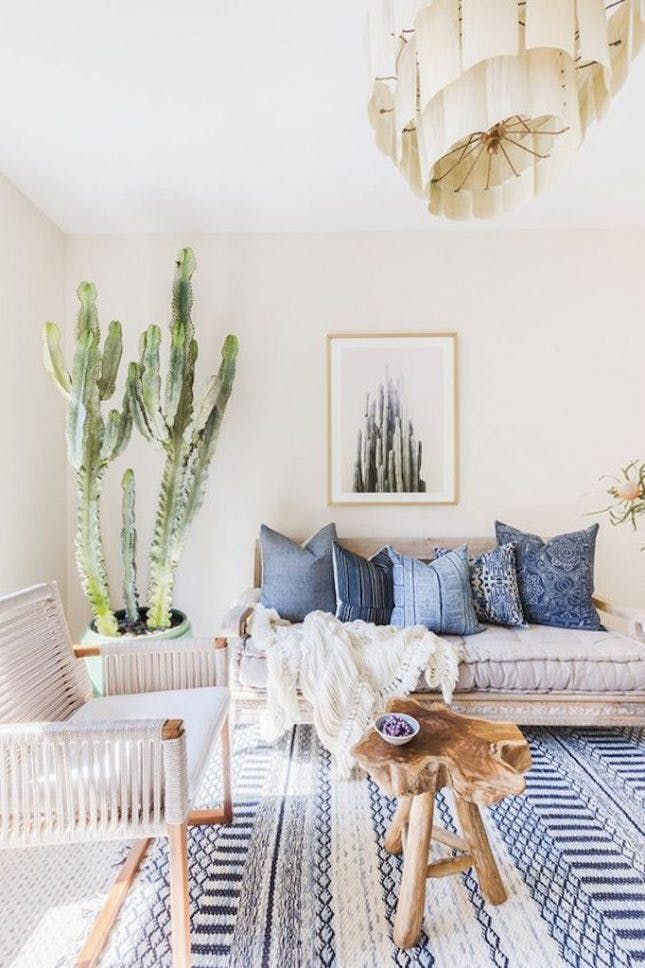 Living Room With Light Neutral Walls A Printed Blue Rug Large Cacti Reclaimed Wood Table And Woven ArmchairMix