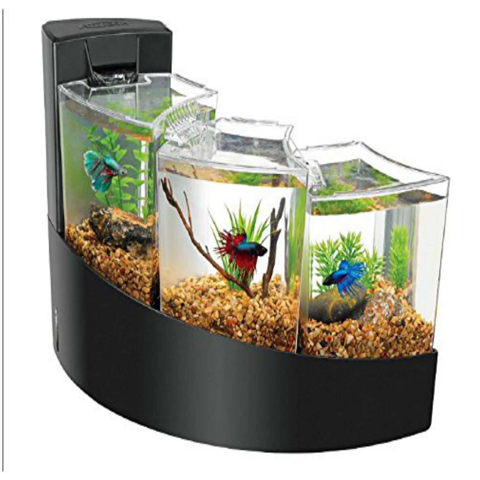 Fish Tank Home Aquarium Pinterest