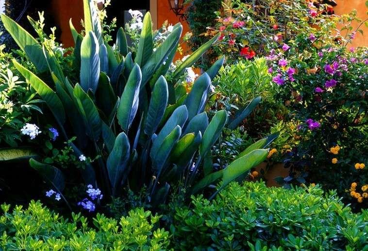 Il giardino con i fiori per te giardini paghera for Giardino con fiori