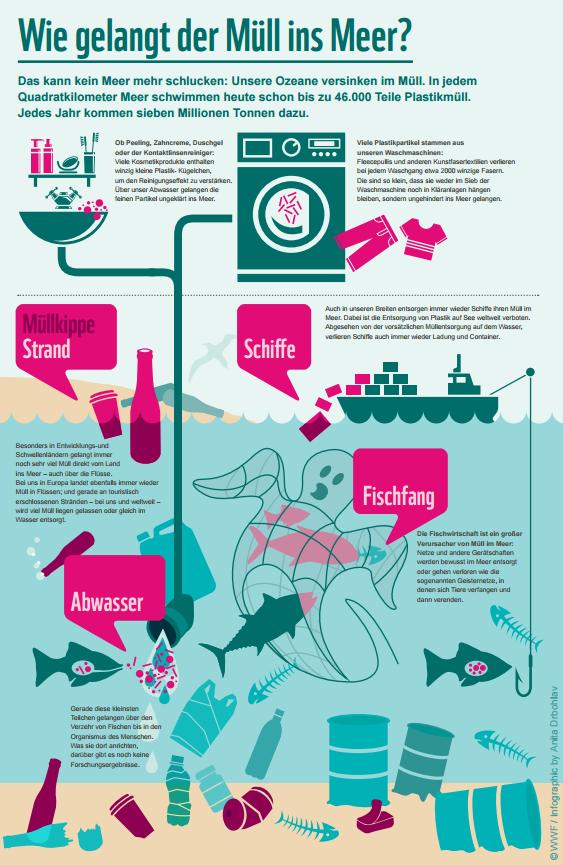 Wie gelangt der Müll ins Meer?? (wwf.de) | Das Plastik-Problem in ...