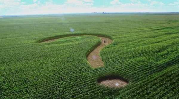 FDA on Corn Sugar - Ad campaign by the Corn Refiners Assn.