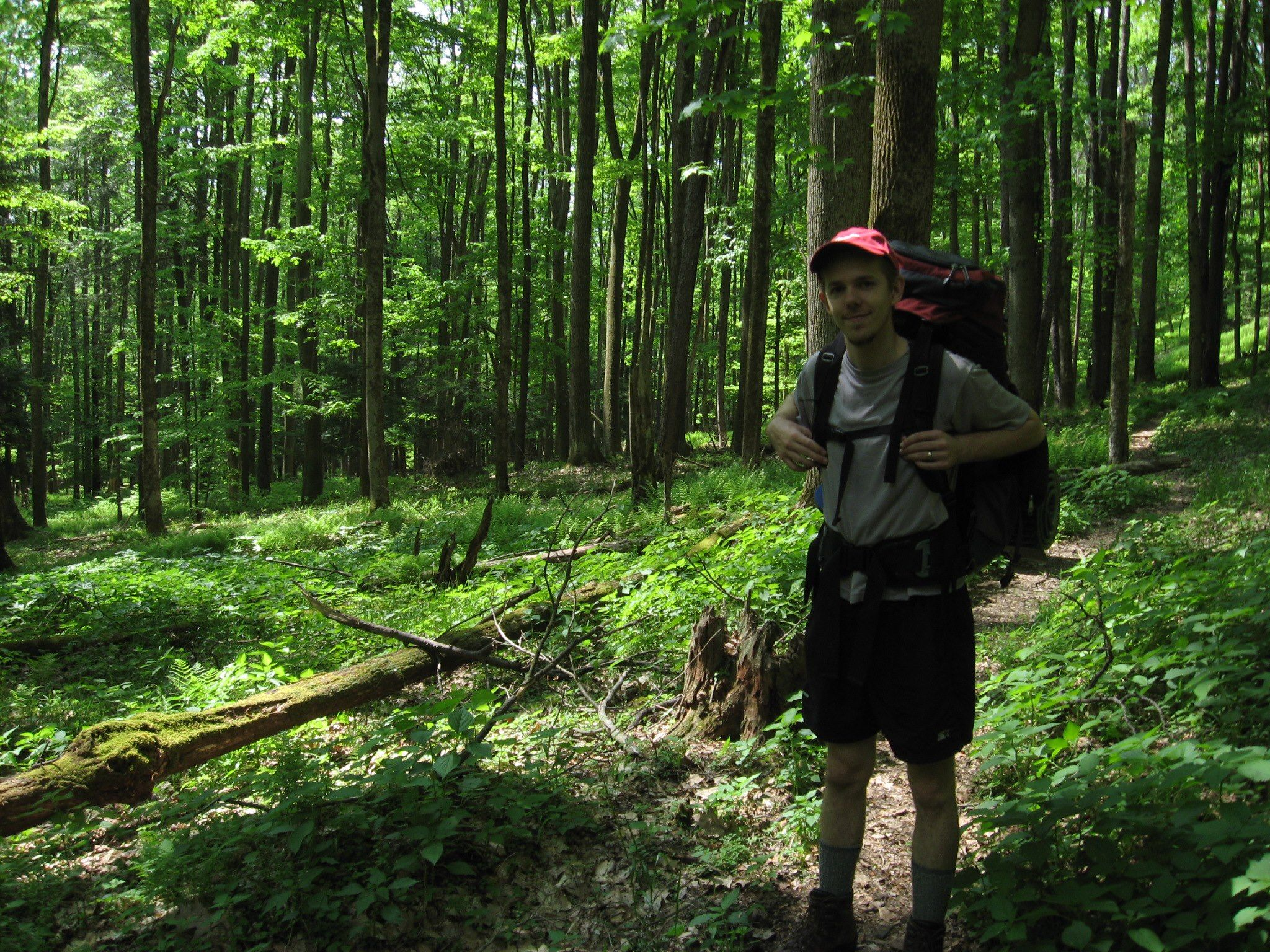 Grand Canyon Pa Directions%0A The Hickory Creek Trail  Warren  PA  traverses the Hickory Creek  Wilderness  one